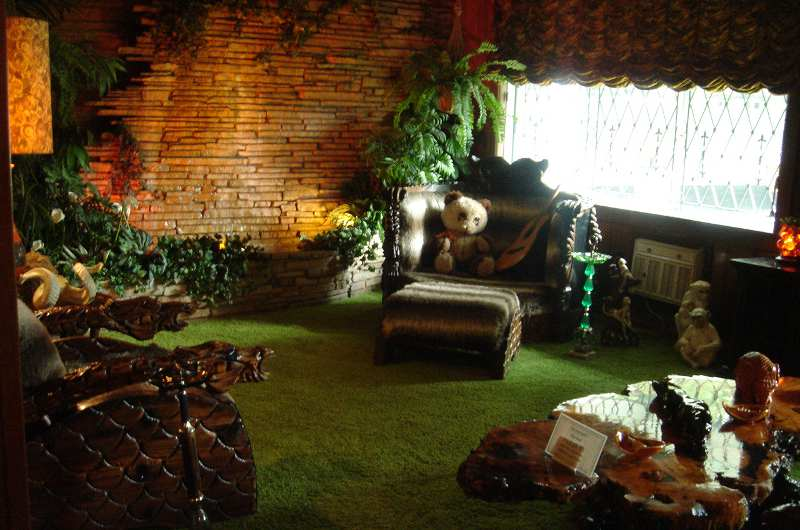 The Jungle Room Banner